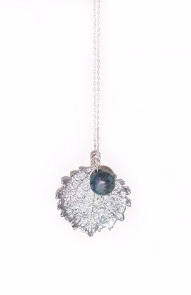 silver aspen